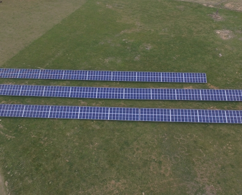 solar panels on our non-gmo farm