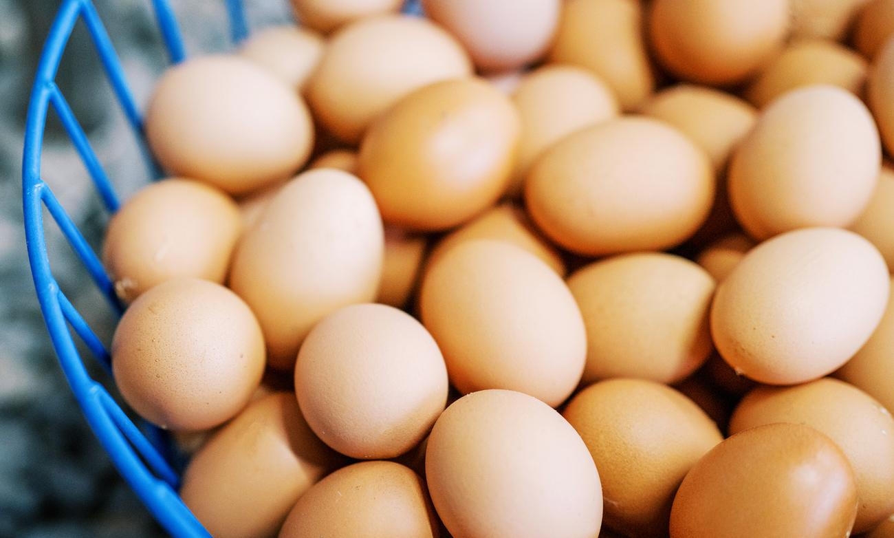 Non GMO Hand Picked Eggs